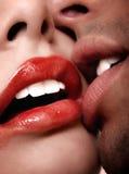 varm kyss Fotografering för Bildbyråer