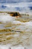 varm lägre kolossal fjäderterrass yellowstone Royaltyfri Foto