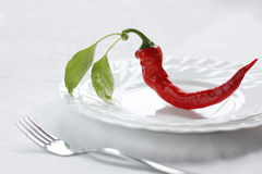 varm mat Arkivbilder