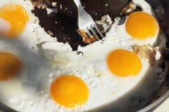 Varm maträtt av ägg Royaltyfri Fotografi