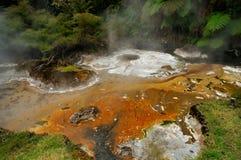 varm mineral sediments volcan waimangu för ström Royaltyfri Fotografi