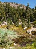 Varm mineralisk pöl i bergdalen Arkivfoto