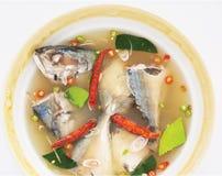 Varm och kryddig makrillsoppa Arkivbilder
