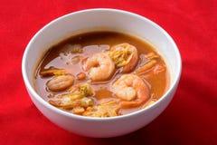 Varm och sur curry med tamarindfruktsås Royaltyfria Foton