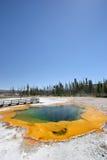 varm pölfjäder yellowstone för smaragd royaltyfri foto