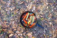 Varm panna med en maträtt av röda peppar och gröna gurkor på gräset i skogen royaltyfri bild