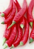 varm peppar för chili royaltyfri fotografi