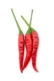 varm peppar för chili Royaltyfri Bild