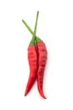 varm peppar för chili Arkivfoton