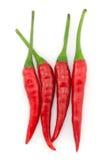 varm peppar för chili Arkivbild
