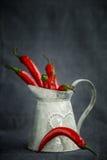 Varm peppar för röd chili i en metallgrå färgkorg Arkivfoto