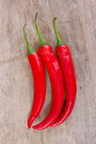 Varm röd chili eller chili Arkivfoton