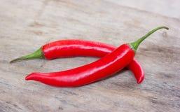 Varm röd chili eller chilipeppar Royaltyfria Bilder