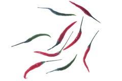 Varm röd grön chilichilipeppar som isoleras på vit bakgrund Fotografering för Bildbyråer