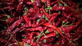 Varm röd peppar Fotografering för Bildbyråer