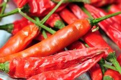 varm red för chilir Arkivfoton