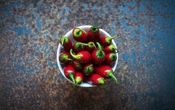 varm red för chilis Arkivfoto