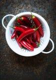 varm red för chilis Fotografering för Bildbyråer