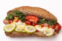 varm smörgås för hund Arkivfoto