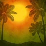Varm sommar Arkivbilder