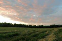 Varm sommarafton Färgrik solnedgång över ett komprimerat fält Arkivfoto
