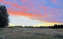 Varm sommarafton Färgrik solnedgång över ett komprimerat fält Arkivbild