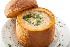 varm soup Arkivfoton
