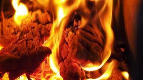 Varm spis mycket av trä och brand Ultrarapidvideo lager videofilmer