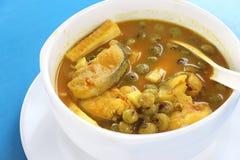 Varm sur soppa med den filébagridhavskatten och kokosnöten sur soup Royaltyfri Bild