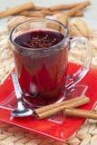 varm tea för frukt Royaltyfri Fotografi