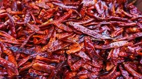 Varm torkad chili Thailand Arkivfoton