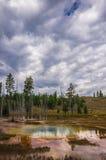 Varm vår i den Yellowstone nationalparken Arkivbilder