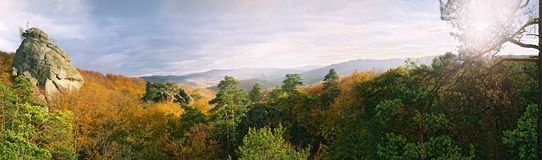 Varma färger av skogen i bergen royaltyfri bild
