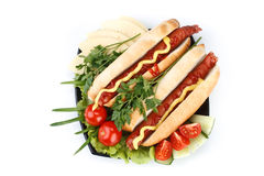 varma grönsaker för hund Fotografering för Bildbyråer