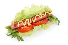 varma grönsaker för hund Royaltyfria Bilder