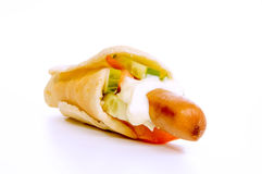varma grönsaker för hund Royaltyfri Bild