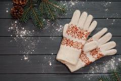 Varma handskar eller tumvanten med gran förgrena sig på träbakgrund Arkivfoto