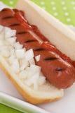 varma ketchuplökar för hund Fotografering för Bildbyråer