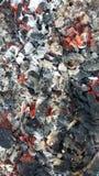 Varma kol i branden Royaltyfri Bild