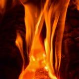 Varma kol i ugnen royaltyfri bild
