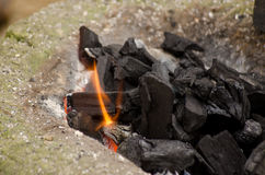 Varma kol med brand burning kol Arkivbilder
