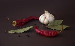 Varma kryddor för mat Arkivfoto
