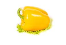 Varma kryddor, grönsaker Fotografering för Bildbyråer
