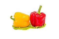Varma kryddor, grönsaker Arkivbild