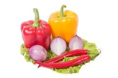 Varma kryddor, grönsaker Royaltyfri Fotografi