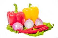 Varma kryddor, grönsaker Arkivfoto