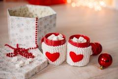 varma marshmallows för choklad Royaltyfri Fotografi