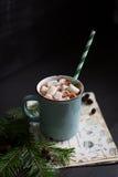 varma marshmallows för choklad Royaltyfria Foton
