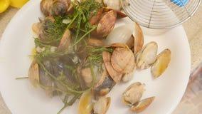 Varma musslor i maträtt lager videofilmer