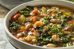 Varma organiska hemlagade 10 Bean Soup Arkivfoto
